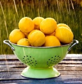 lemons_in_strainer